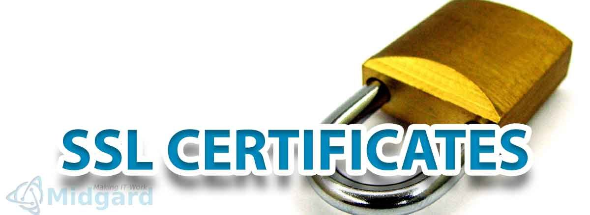 SSL Certification on our Websites 2