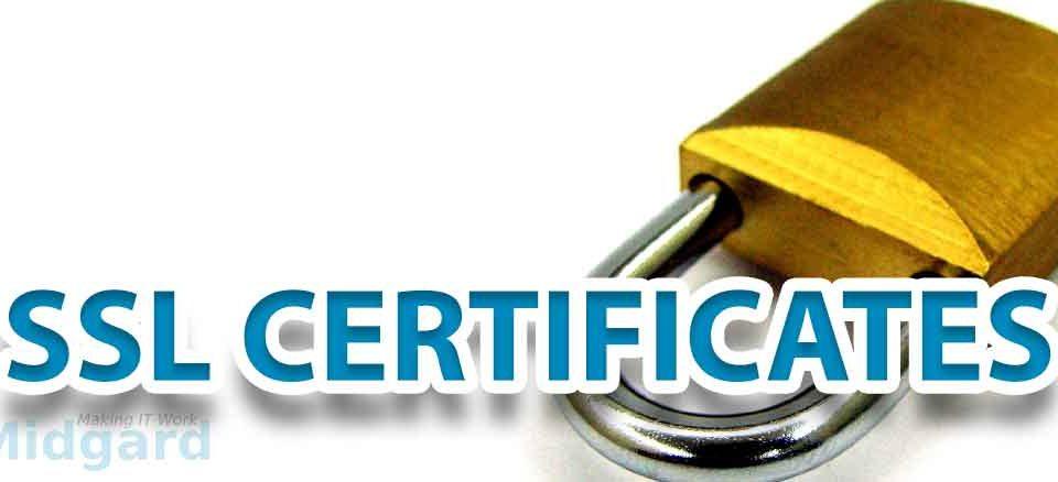 SSL Certification on our Websites 2